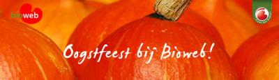 oogstfeest-banner-pompoen